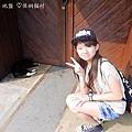 侯硐貓村 (17).JPG