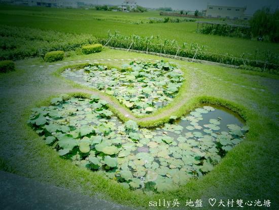 大村雙心池塘 (15).JPG