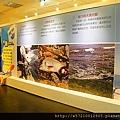 寶熊漁樂館 (10).JPG