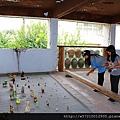 台灣碗盤博物館 (23).JPG