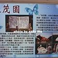 通霄秋茂園 (2).JPG
