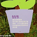 薰衣草森林明德店 (32).JPG