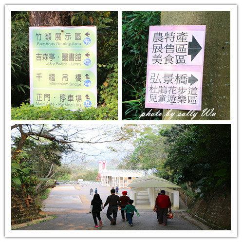 竹崎天空步道 (23).jpg