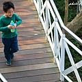 竹崎天空步道 (26).JPG