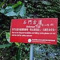 神仙谷 (37).jpg