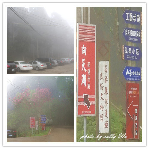 向天湖 (2).jpg
