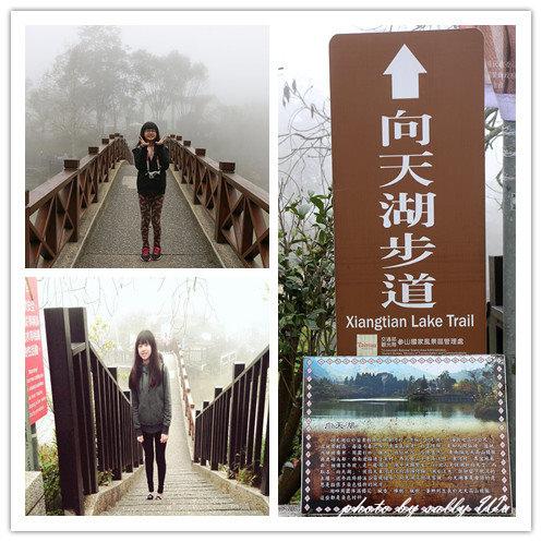 向天湖 (10).jpg