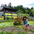 清境小瑞士花園 (6).JPG