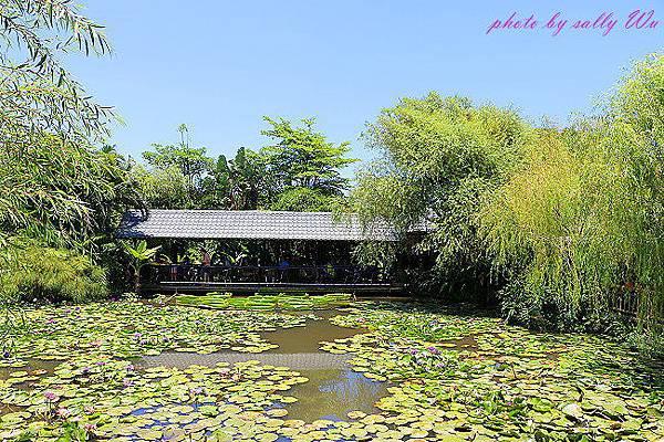 莫內花園 (25).JPG