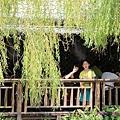 莫內花園 (27).JPG