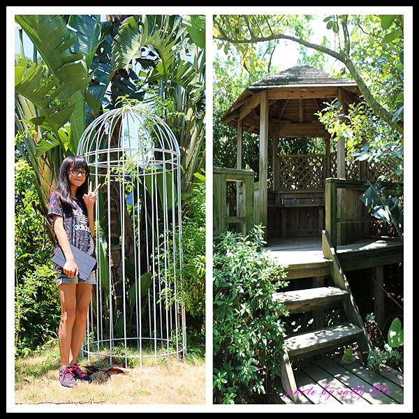 莫內花園 (31).png