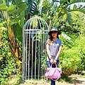莫內花園 (32).JPG