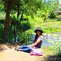 莫內花園 (36).JPG