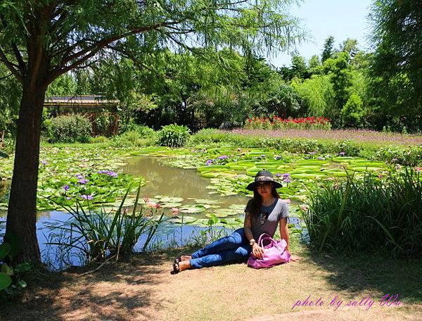 莫內花園 (37).JPG