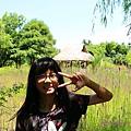 莫內花園 (45).JPG