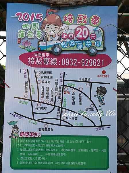 林家古厝農場 (2).JPG