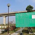 苗栗高鐵公園 (13).JPG