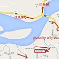 新社梅花森林梅花隧道 (42)