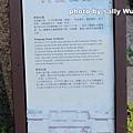 台南府中街 (4).JPG