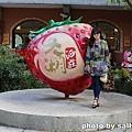 泰安山吻泉 (37).JPG