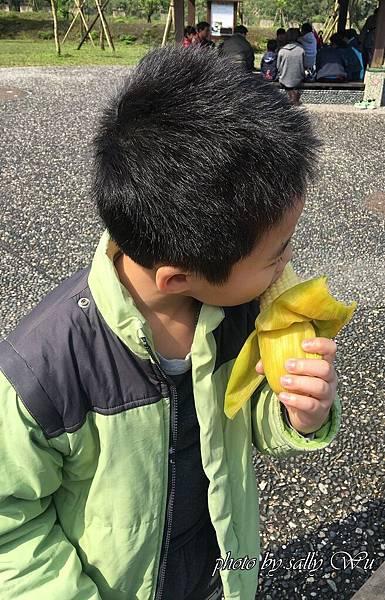清水地熱 (47).JPG