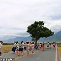 台東池上一日遊 (13).JPG