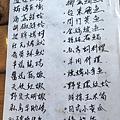 新竹青青草原溜滑梯 (40).JPG