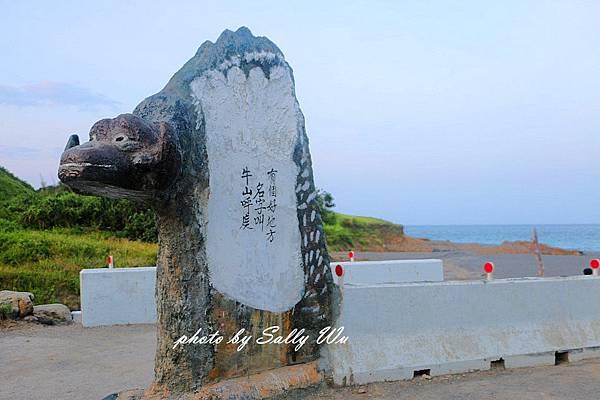 台東飛魚 (58).JPG
