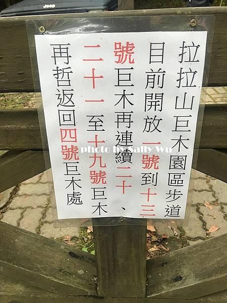 拉拉山一日遊 (42).JPG