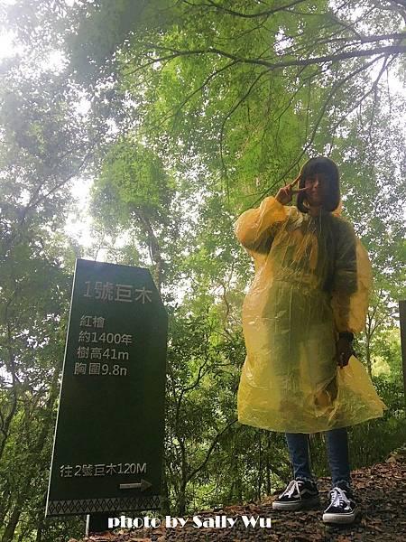 拉拉山一日遊 (47).JPG