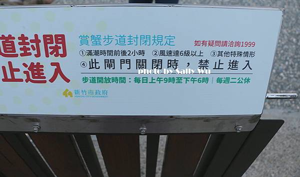 新竹香山濕地 (35).JPG