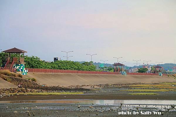 新竹香山濕地 (36).JPG