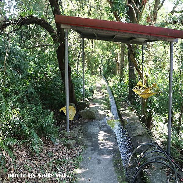 猴洞坑瀑布 (11).JPG