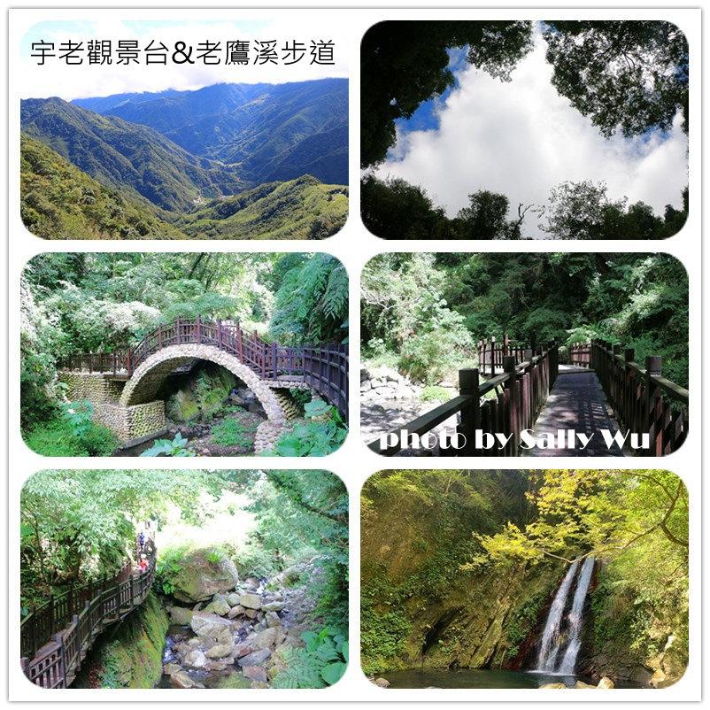 老鷹溪步道 (1).jpg