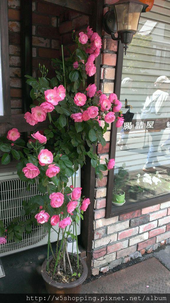2014-06-19 09.40.58.jpg