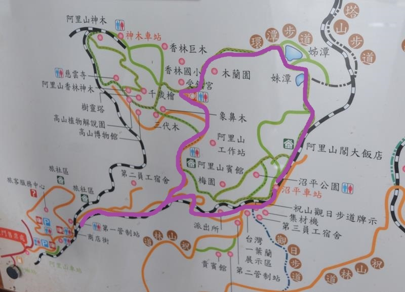 DSC_0309 (Copy).JPG