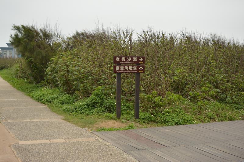 DSC_0365 (Copy).JPG
