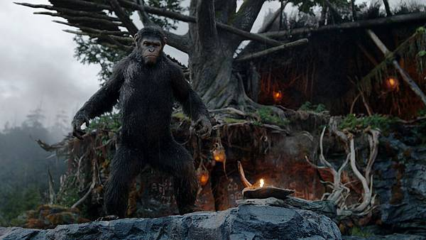 2014-dawn-of-the-planet-of-the-apes-new-background-images