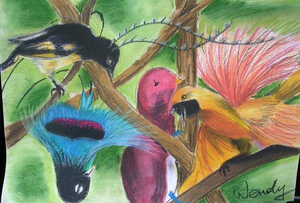 《粉彩》Odd Birds