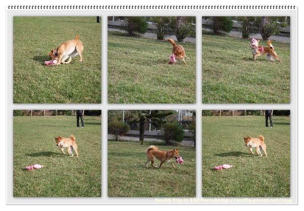 photoscape1-35.jpg