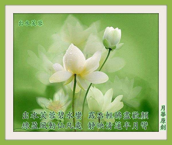 166053_461057737322525_2021797966_n.jpg