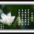 535755_702134576469250_116084178_n.jpg