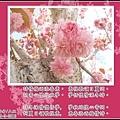 972259_659362394079802_1377286192_n (1).jpg