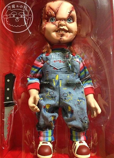 恰吉娃娃開箱