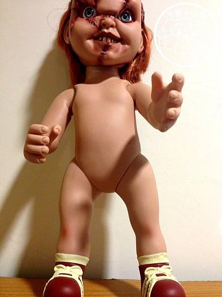 恰吉正面裸體