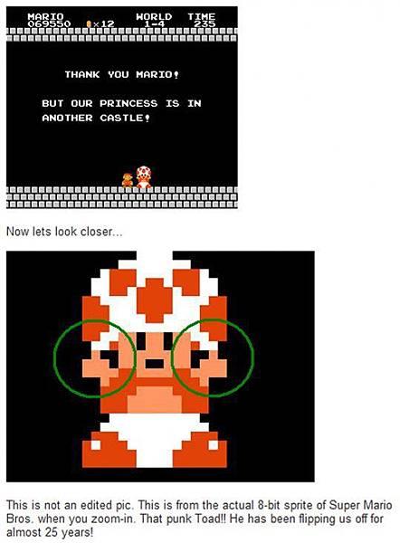香菇的真相