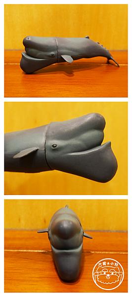 大尾小仙戽斗星球鯨魚.png