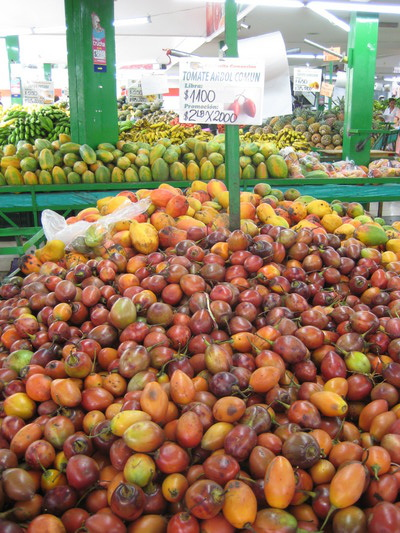 樹番茄(Popayan的水果鋪)