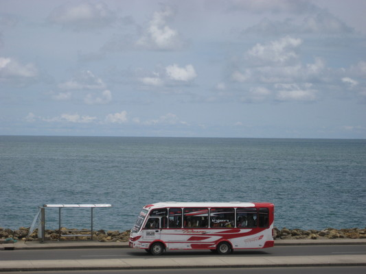 沿著海岸的有好幾路local小巴公車(隨叫隨停,隨時可下車)