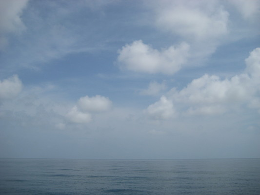 往這個方向一直游過去可以到巴拿馬...